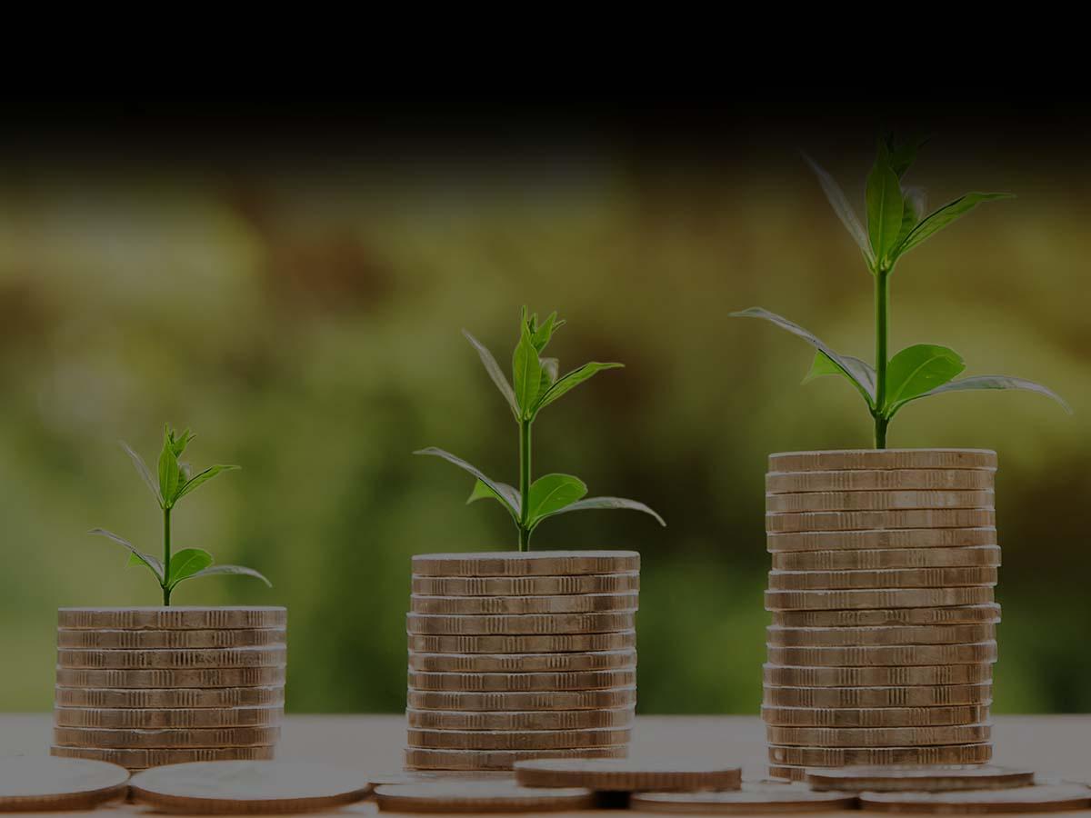 Monedas y vegetación