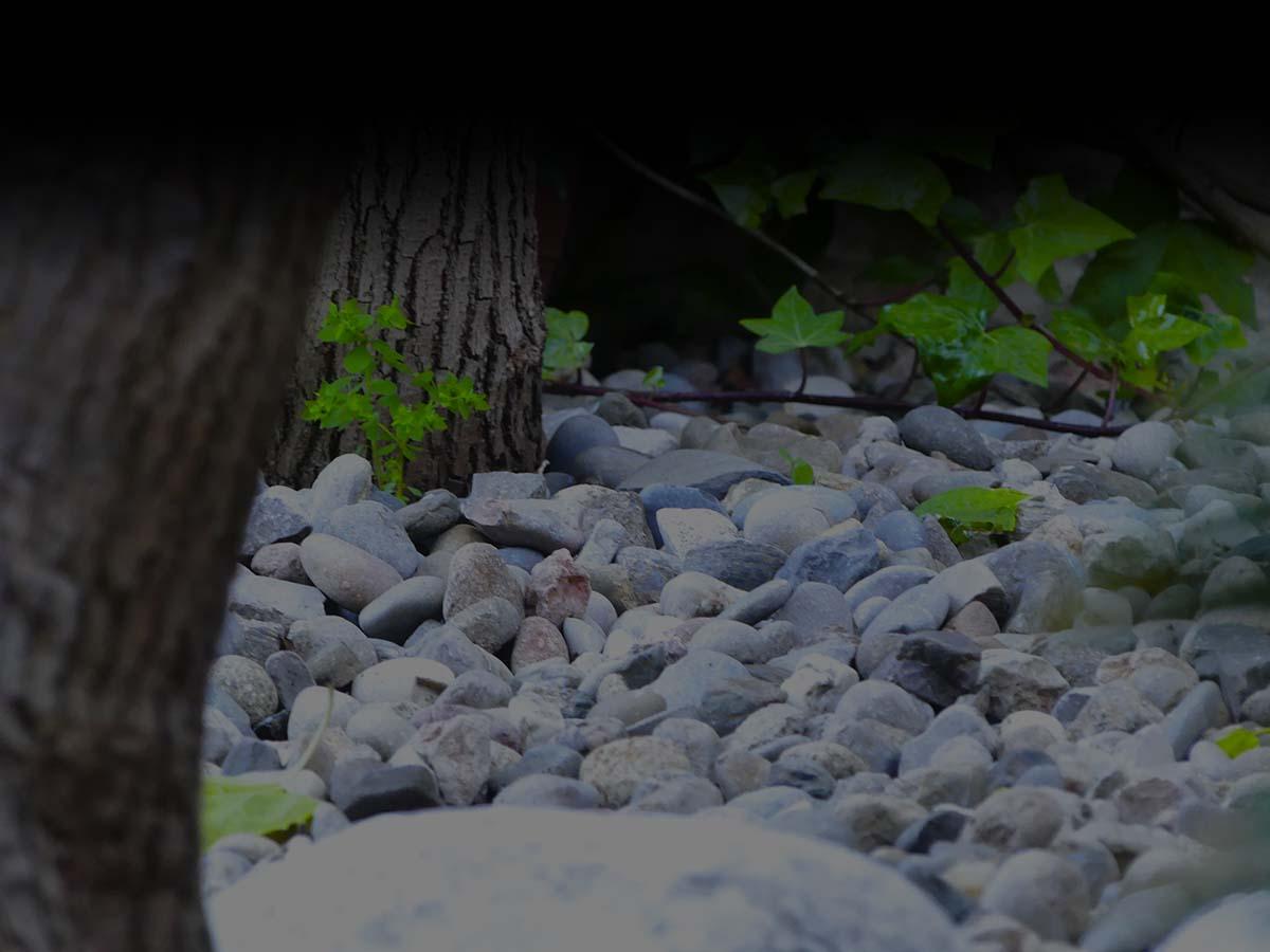 Paisaje con piedras